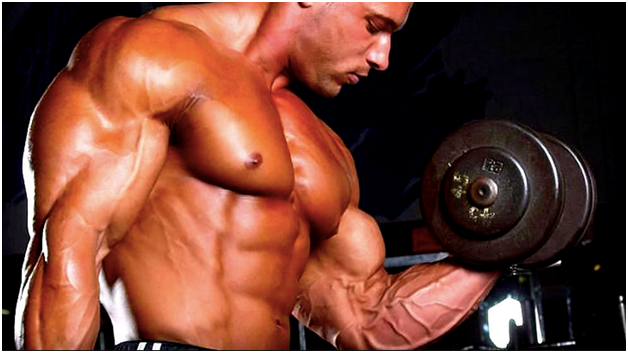 Workout for Bigger Arms