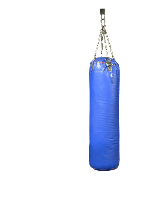 Free-standing or Hanging Punching bag? What is better?