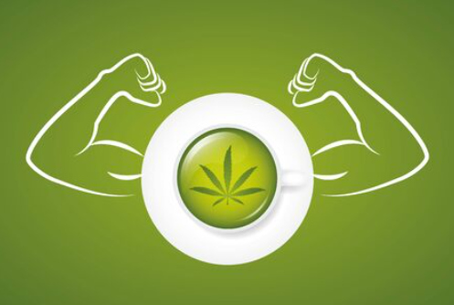 THE CANNABIS AND WEIGHTLIFTERS MIND-MUSCLE CONNECTION