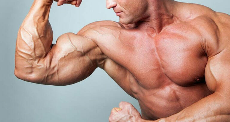 High Rated Arms Exercises for Rock Solid Biceps
